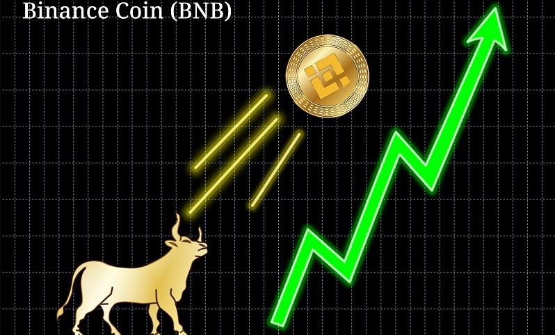 Binance Coin gehört zu den am schnellsten wachsenden Börsen und wird für die Bezahlung von Transaktionen an der Börse eingesetzt. ( Foto: Shutterstock-AndreyO  _)