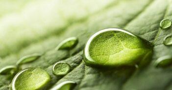 H2Pro erhält USD 22 Millionen für grünen Wasserstoff (Foto: shutterstock - LedyX)